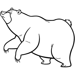 Cute fat bear