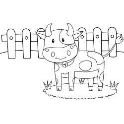Cow in the farm