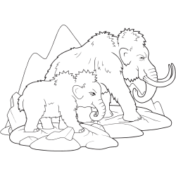 Father and son elephants