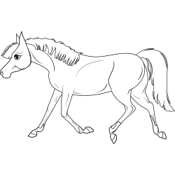 Running horse coloring