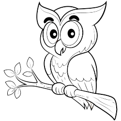 Baby owl coloring