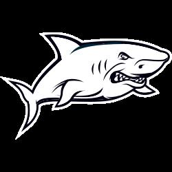 Shark coloring sheets printable