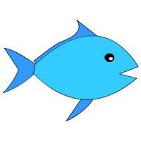 fish 1 e1614429087412